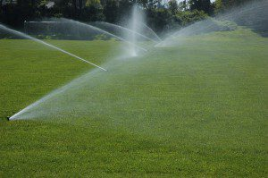 Sprinklers, Collingwood, ON