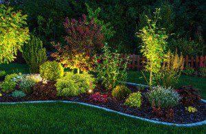 Landscape Lighting, Collingwood, ON