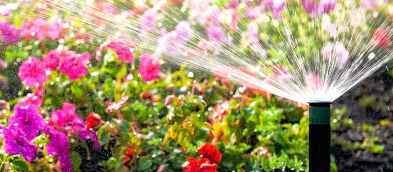 Garden Sprinklers in Wasaga Beach, Ontario