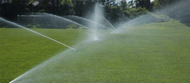 Irrigation Company in Muskoka, Ontario